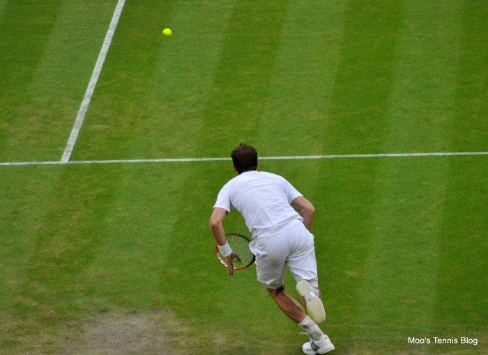 Murray (3)